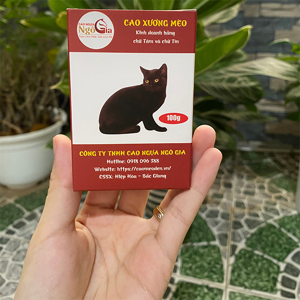 Cao mèo đen